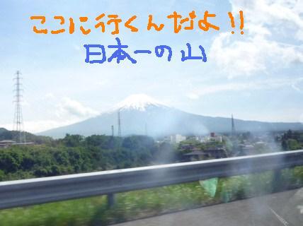 2010_0528_134651p10805274